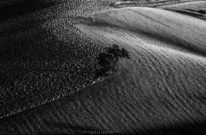 black-white-emanuele-zallocco-15