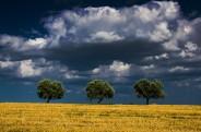 landscapes-hills-emanuele-zallocco-20
