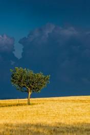 landscapes-hills-emanuele-zallocco-33
