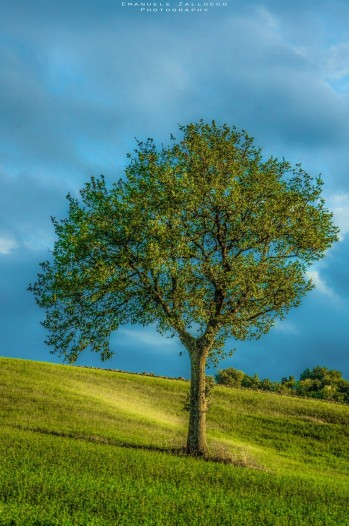 landscapes-hills-emanuele-zallocco-34