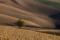 landscapes-hills-emanuele-zallocco-35