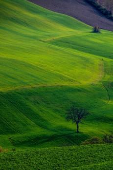 landscapes-hills-emanuele-zallocco-8