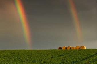 Rainbow on the Hills